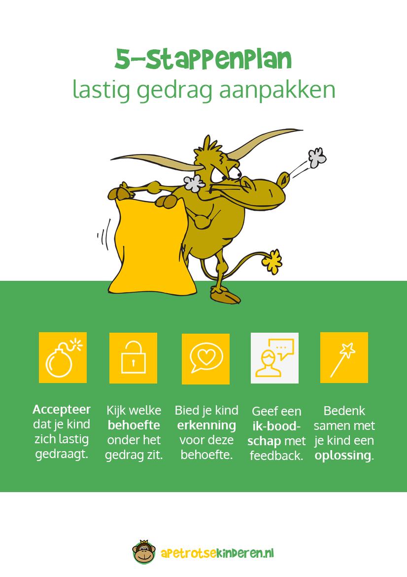 Infographic Lastig gedrag aanpakken