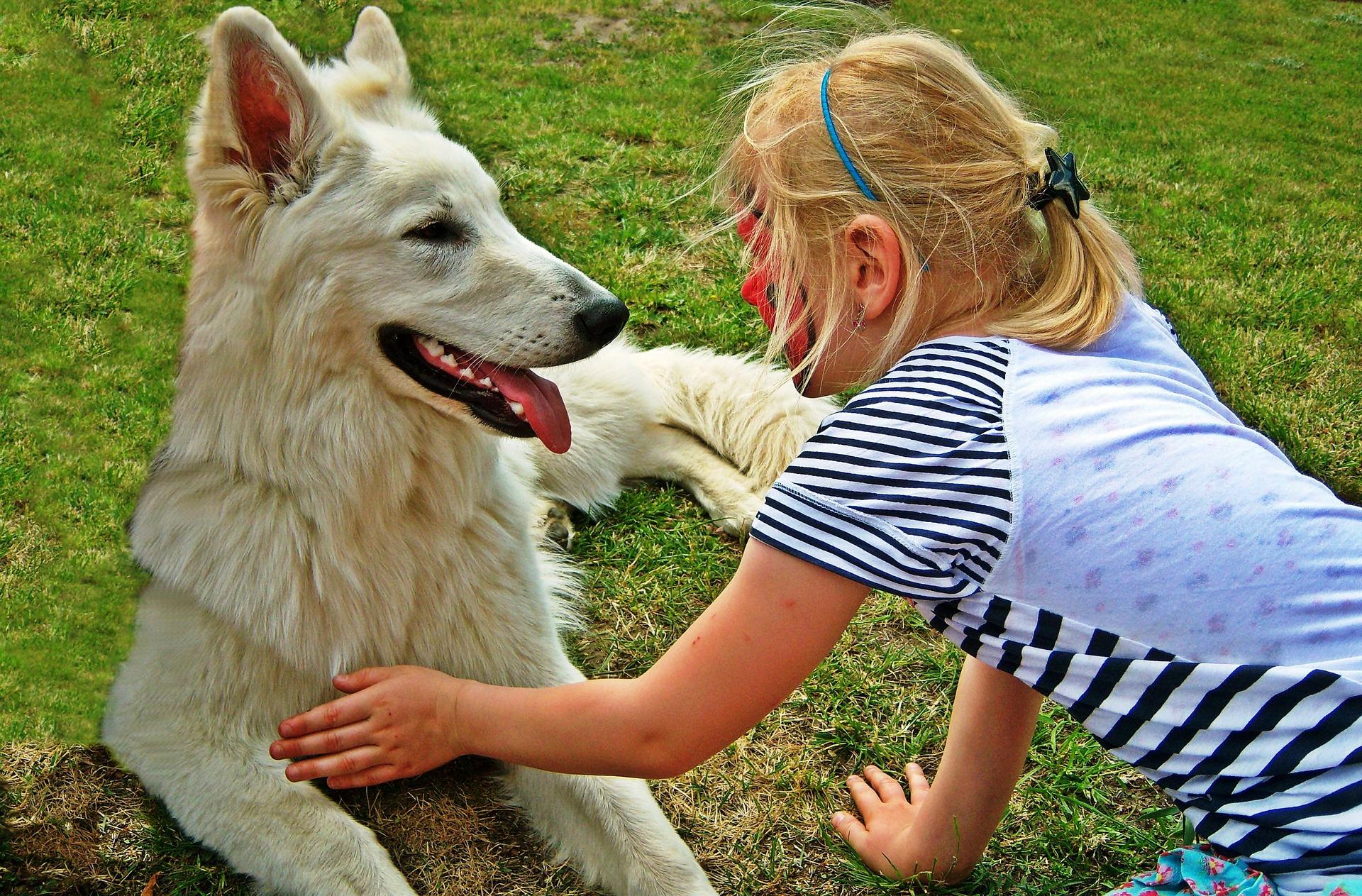 Mijn Kind Is Bang Voor Honden Apetrotse Kinderen